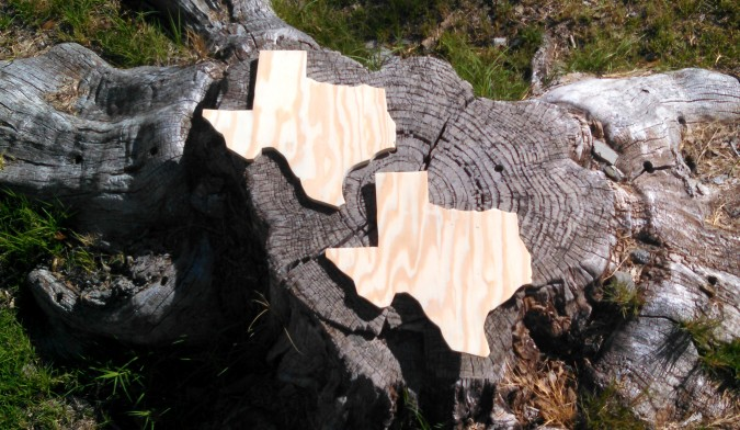 2 Texas Cut Outs